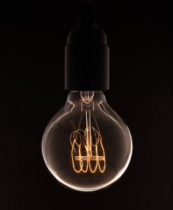 industrial bulb medium globe with quad loop filament