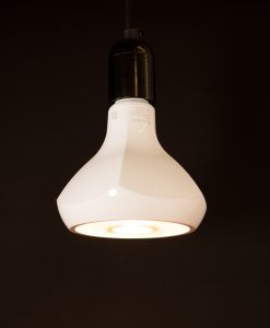 Designer LED Lightbulb PAR38 Energy Efficient