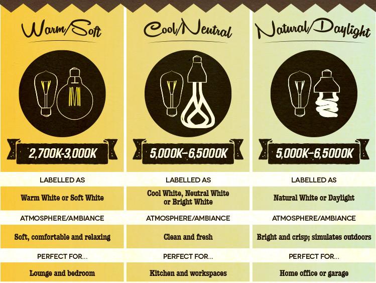 light bulbs explained guide