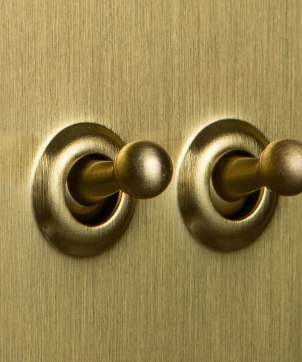 Double gold toggle switch with gold toggles