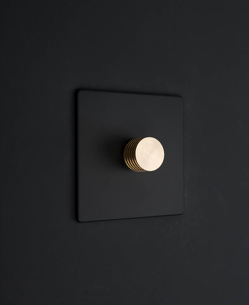 black & gold single dimmer