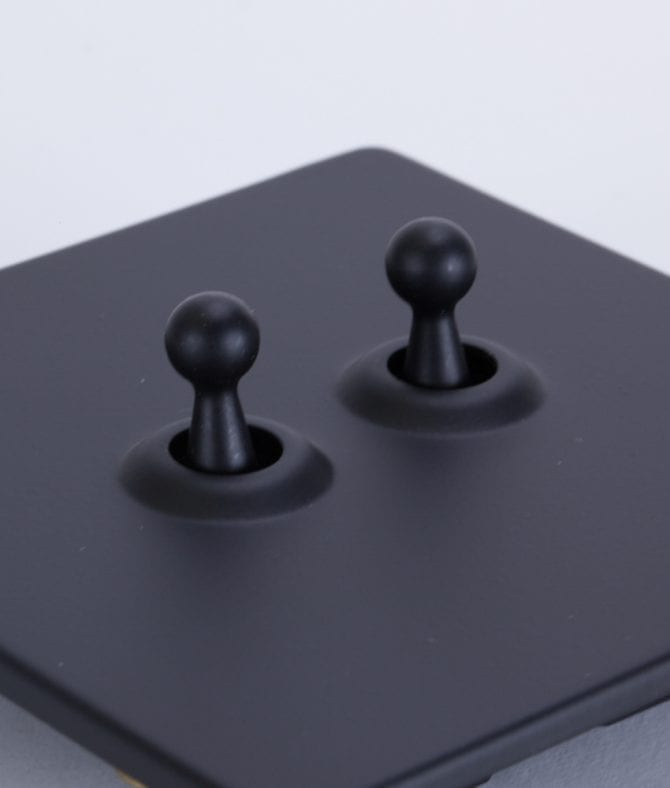 closeup of black and black double toggle switch against white background