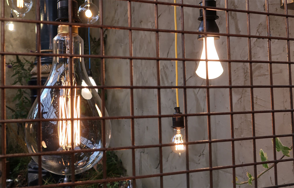 Olympia 100% Design various bulbs suspended against concrete wall