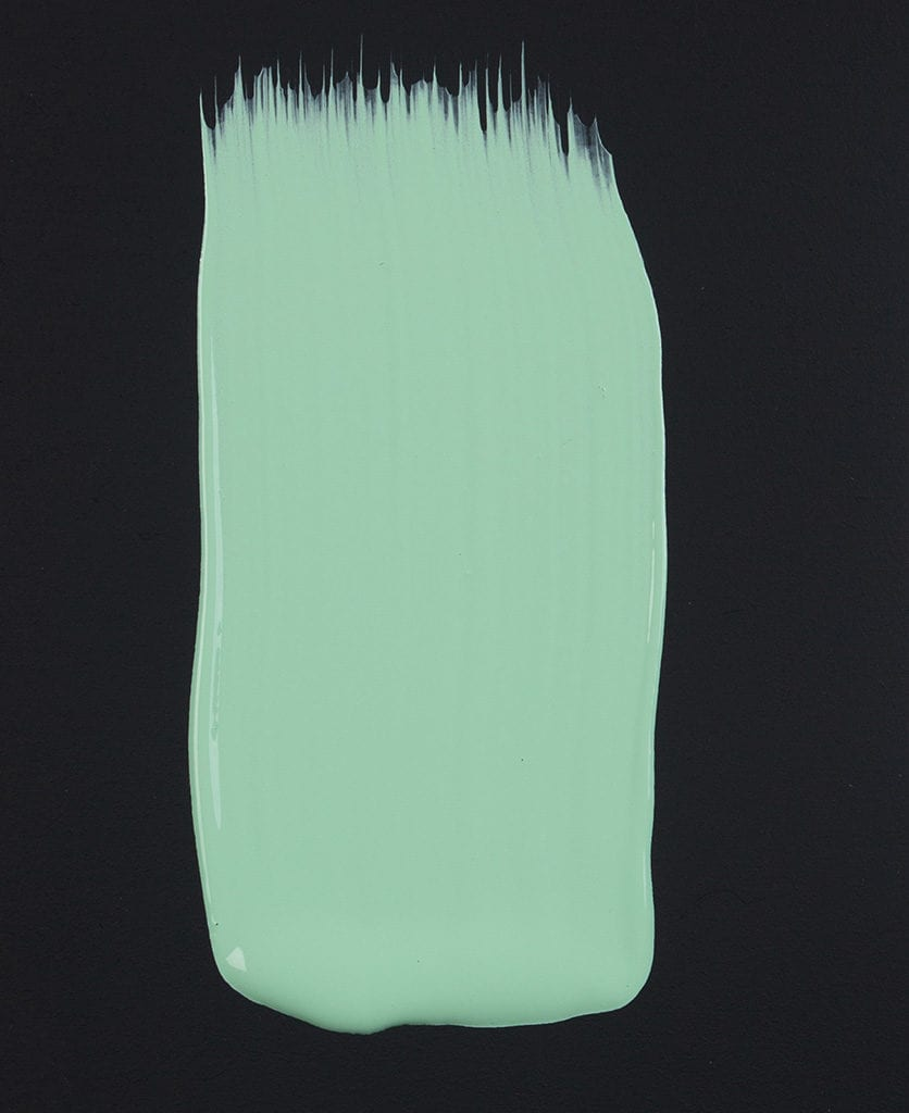 Make A Mint Paint Swatch