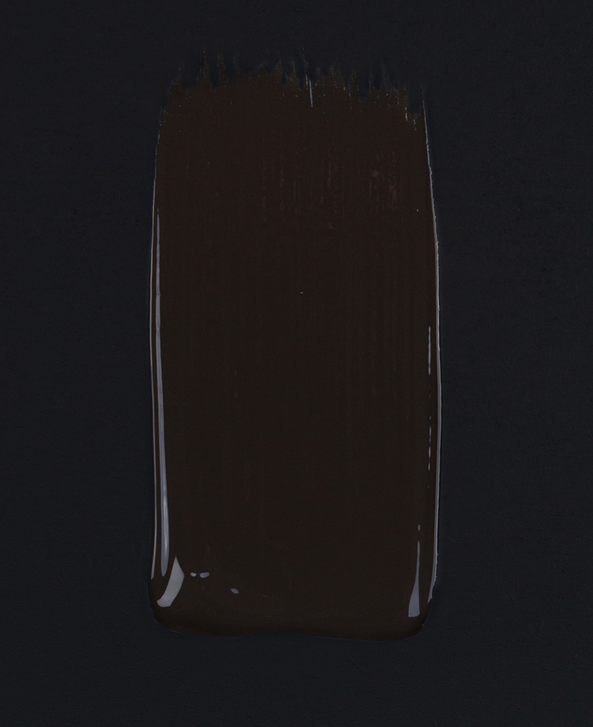 Mud wrestling dark brown paint swatch on dark background
