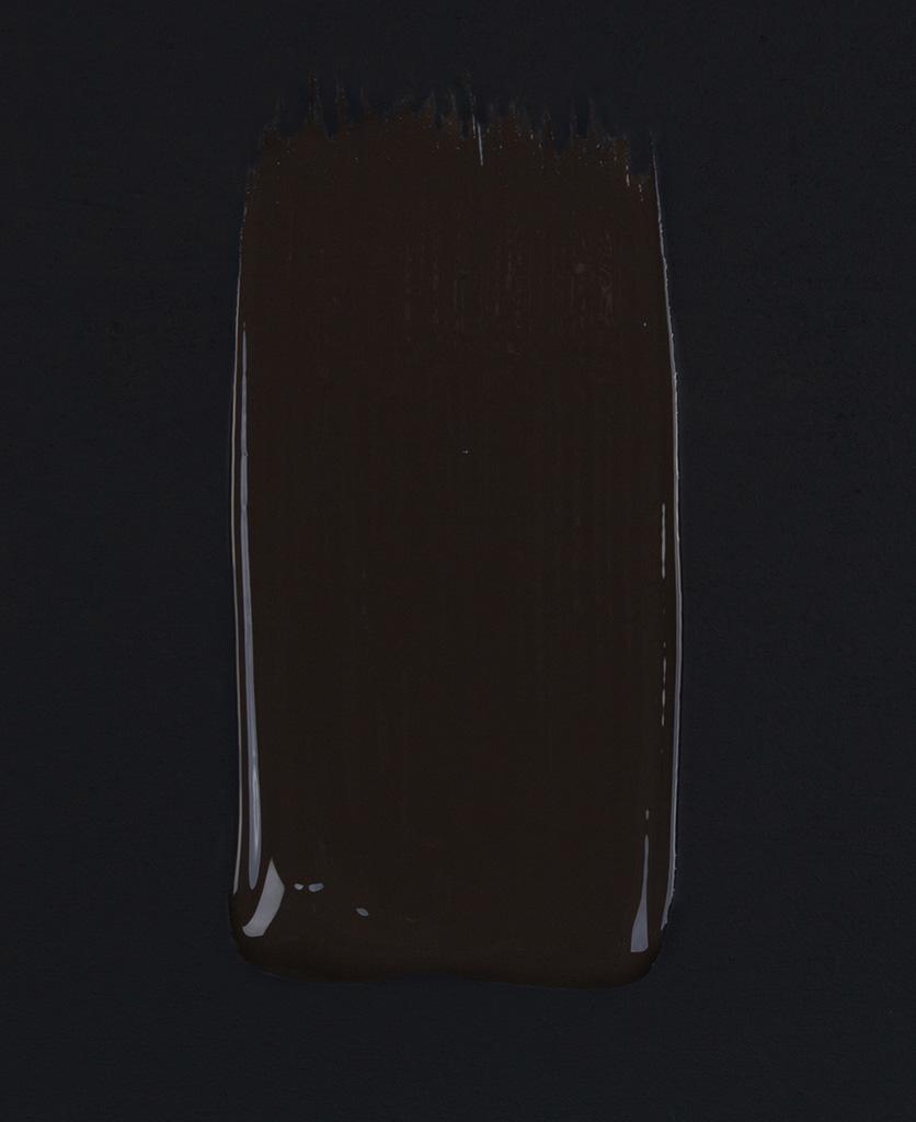 Mud wrestling dark brown paint swatch on dark background