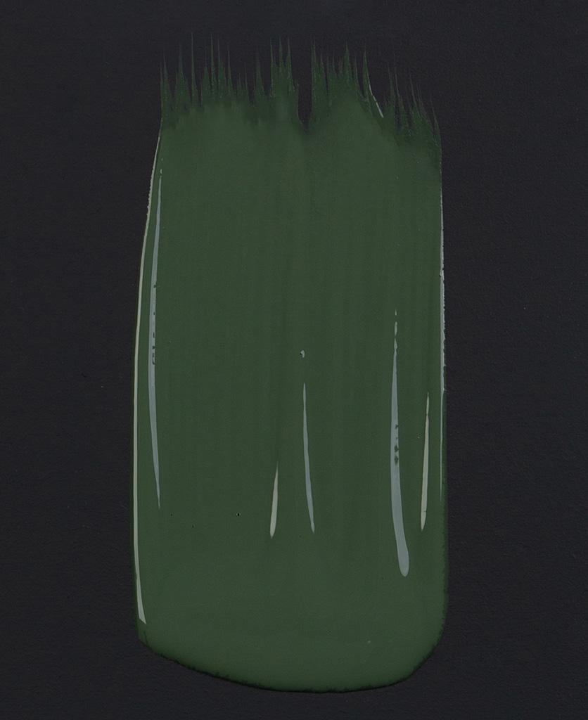 Spruce things up dark green paint swatch on dark background