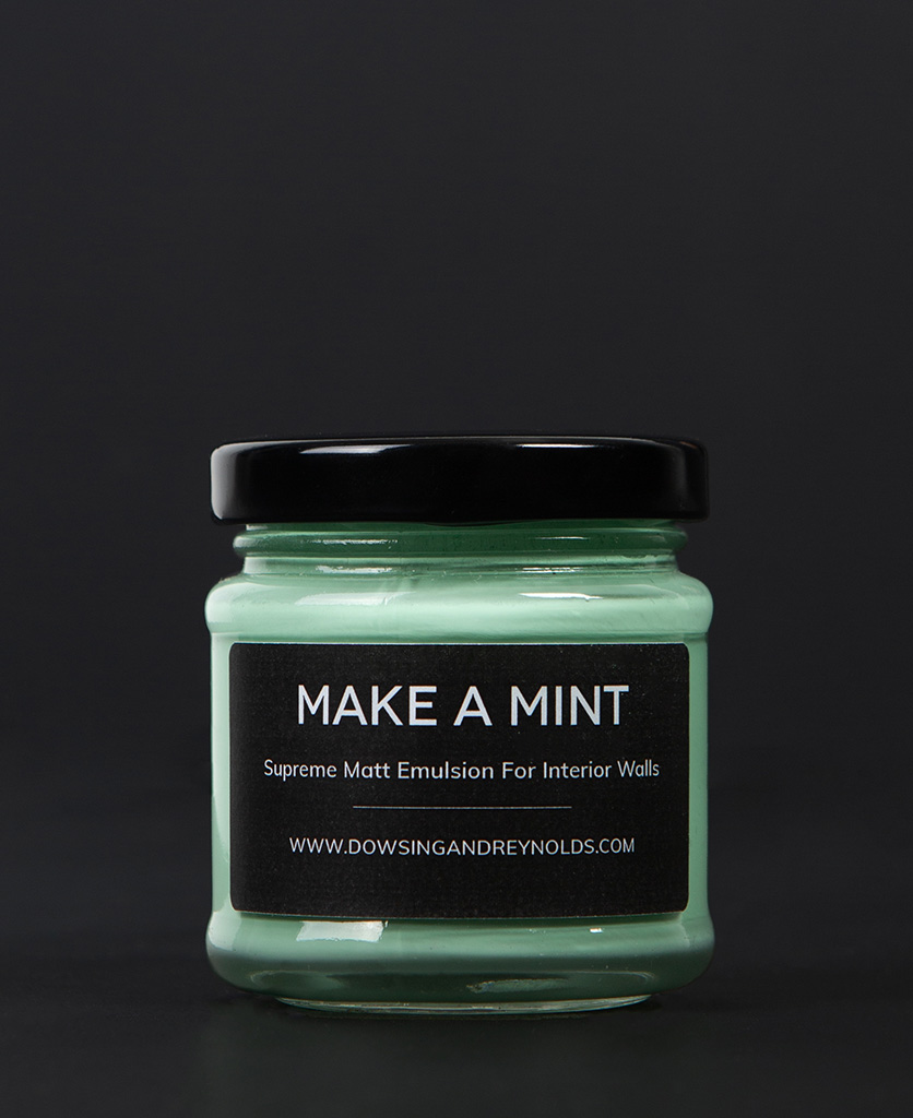 make a mint paint sample pot