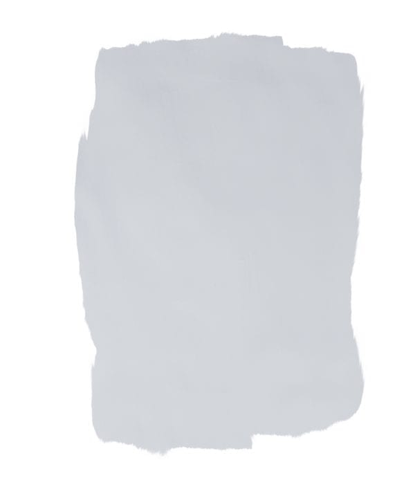 polar bear selfie paint swatch