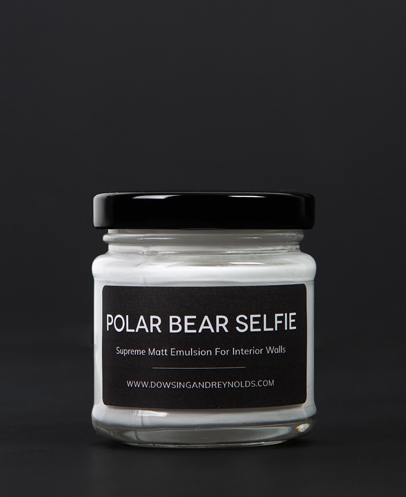 polar bear selfie paint sample pot
