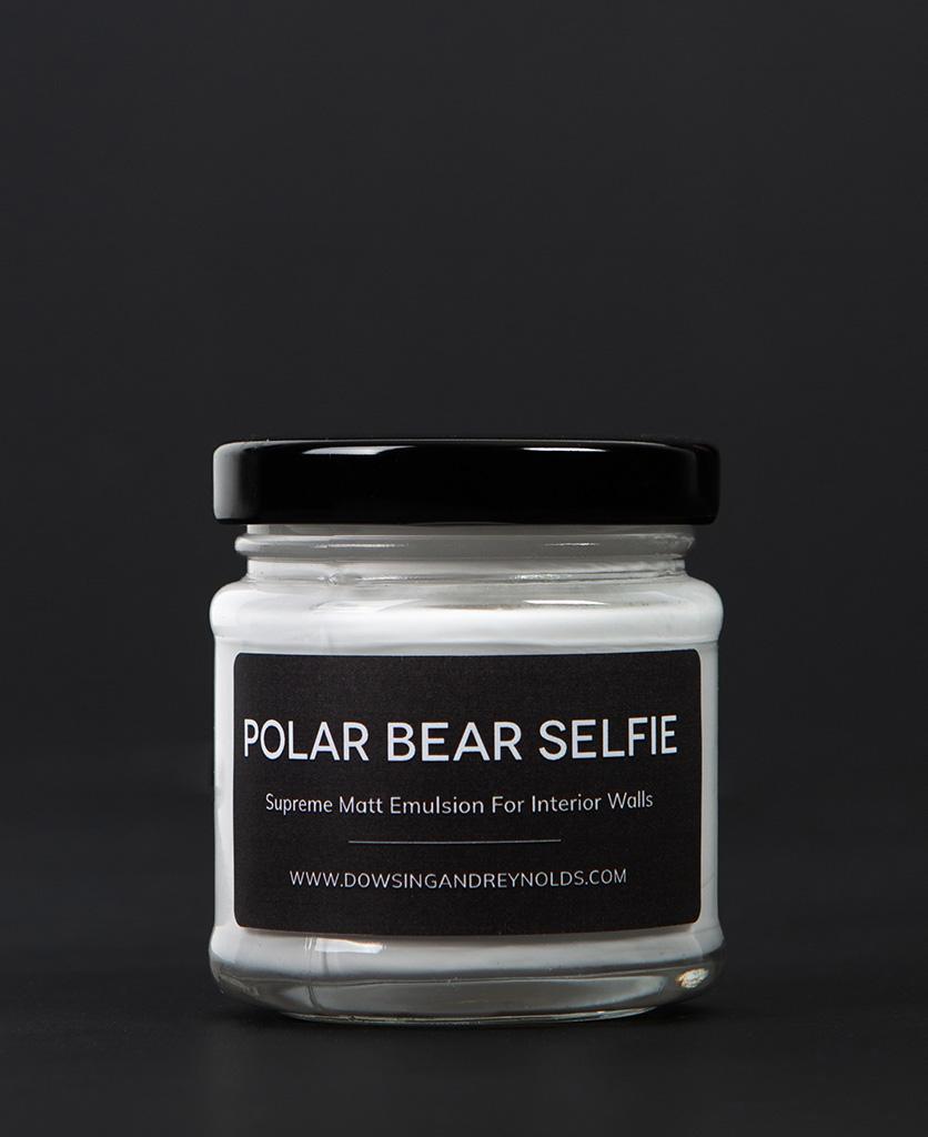 polar bear selfie paint sample pot