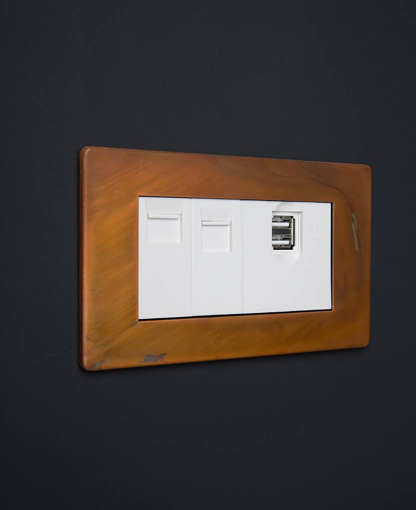 tarnished copper quad data port with white usb and ethernet inserts against black background
