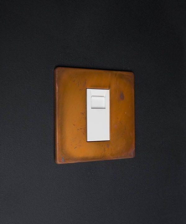 copper & white single data port