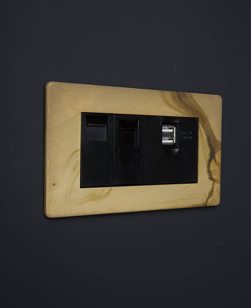 smoked gold data port with black usb port and ethernet inserts against black background
