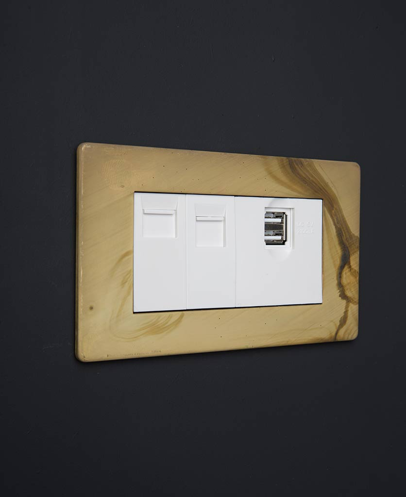 smoked gold data port with white usb port and ethernet inserts against black background