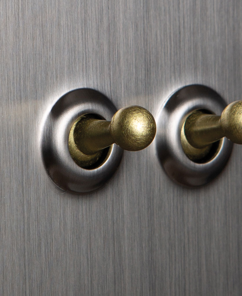 closeup of silver and gold double toggle switch