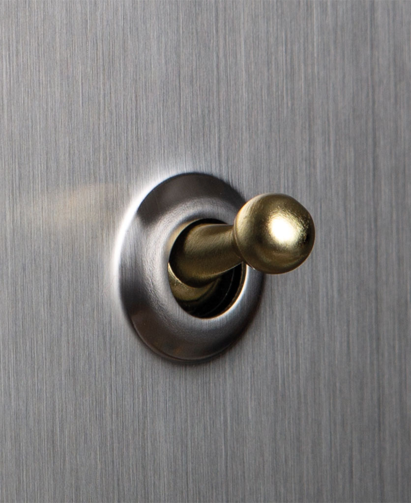 closeup of silver and gold single toggle