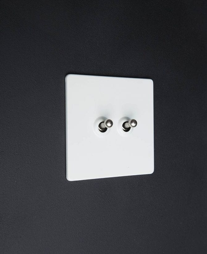 white & silver double toggle switch