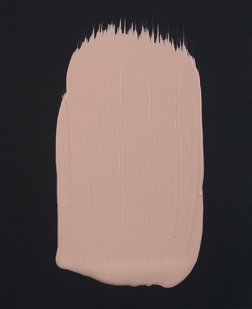 Get plastered dusky pink paint swatch on dark background