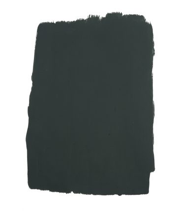 Spruce Things Up Paint swatch