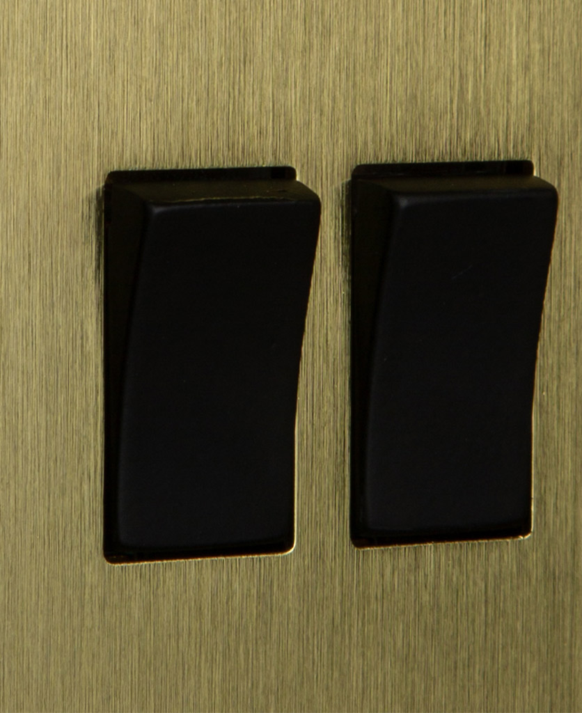 closeup of gold and black double rocker switch