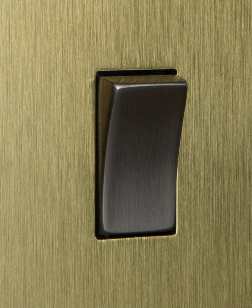 closeup of gold and silver single rocker switch