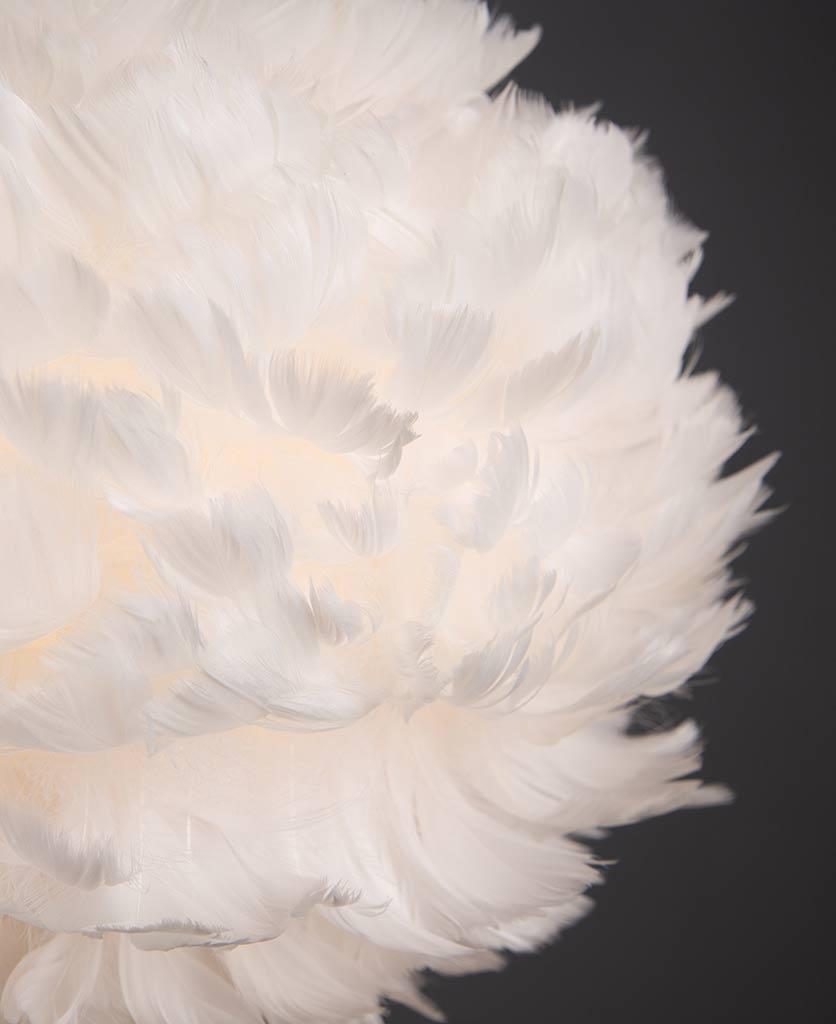 closeup of umage feather pendant light on black background