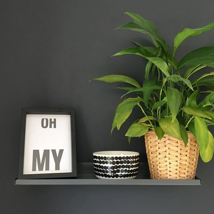 earl grey shelf with picture frame, bowl and potted plant on it, against black wall.