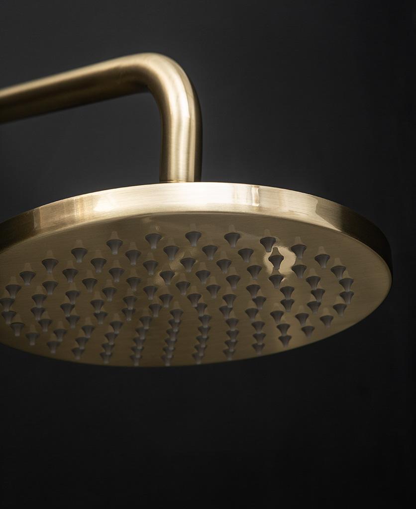 Havasu gold thermostatic shower head