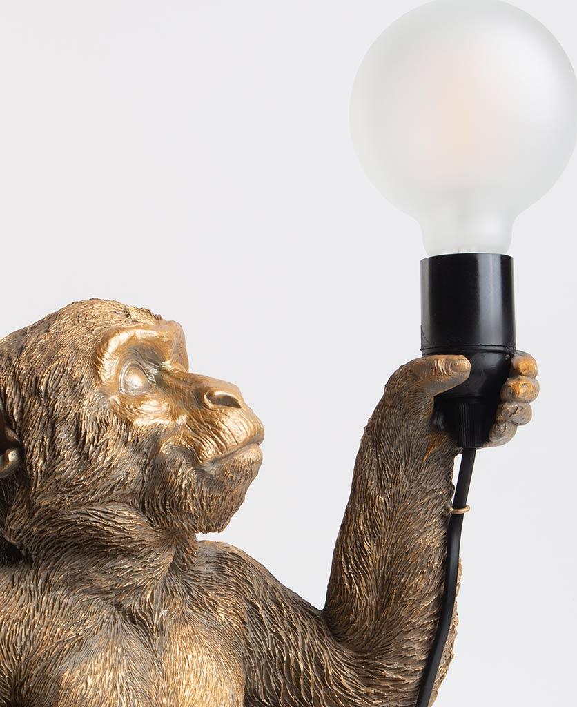 Close up of Abu gold sitting monkey table lamp holding bulb on white background