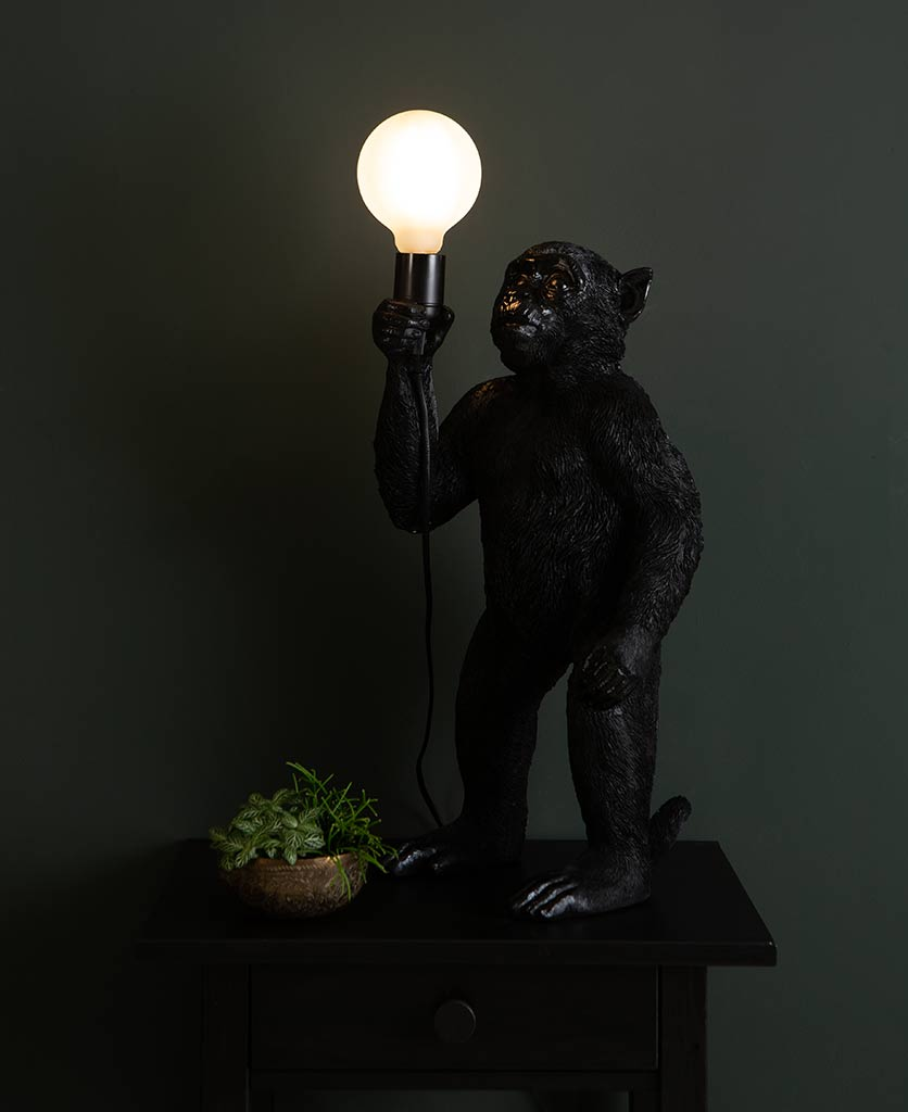Monty black standing monkey table lamp on dark background holding switched on lightbulb
