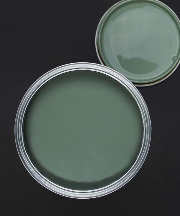 Sage advice sage green paint tin on dark background