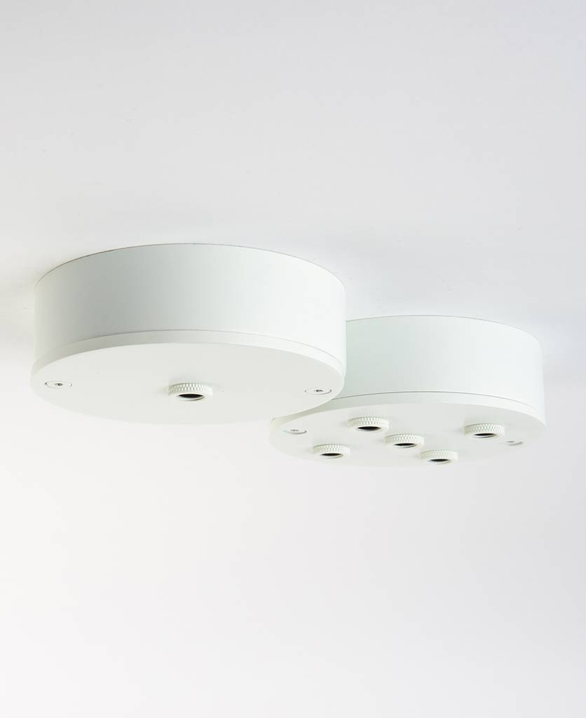 white pendant ceiling rose multi outlet ceiling rosesw against white background