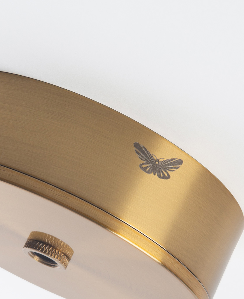 closeup of raw brass ceiling rose with moth against white background