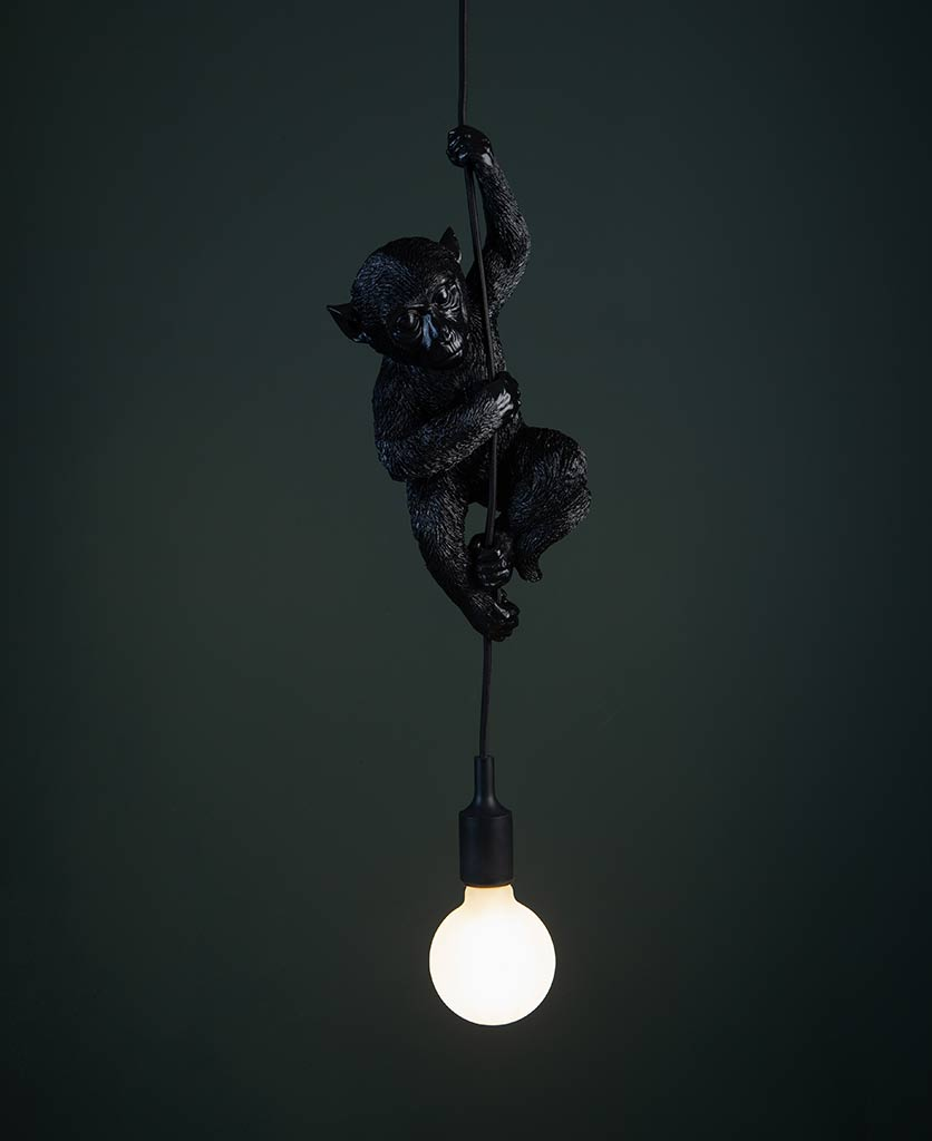 darwin hanging monkey light black monkey with lit frosted bulb against black background