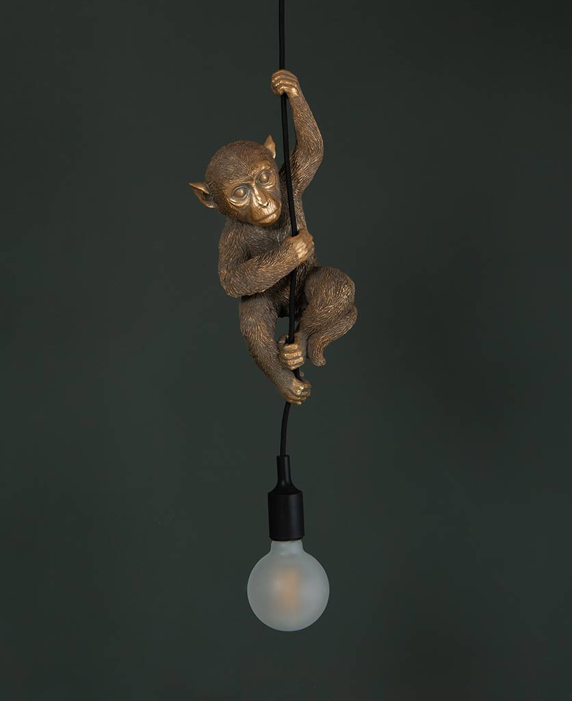 darwin hanging monkey light gold monkey with unlit frosted bulb against black background