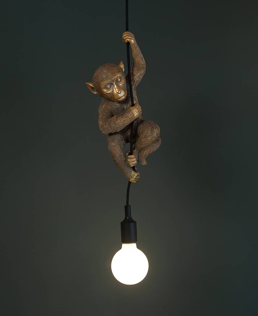 darwin hanging monkey light gold monkey with lit frosted bulb against black background