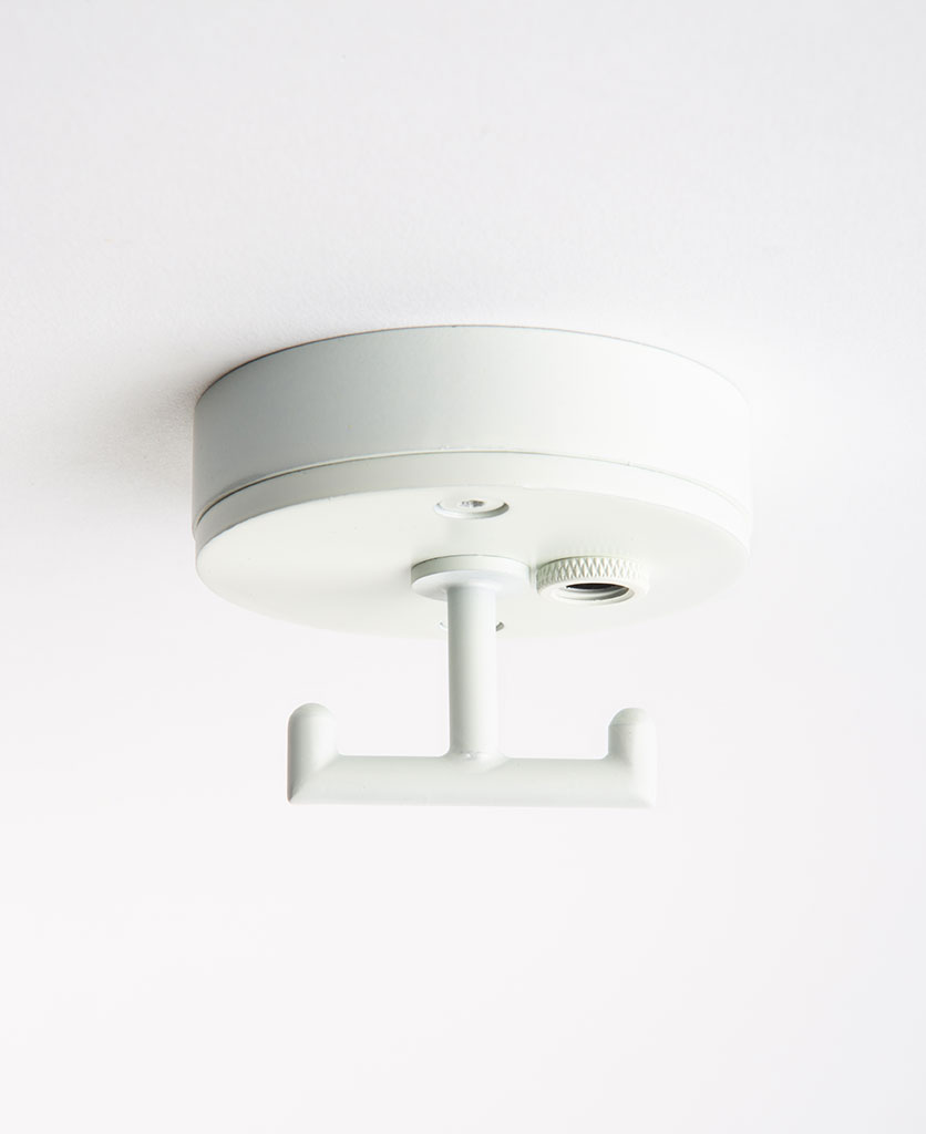 Small white ceiling rose with t shaped hook against white background