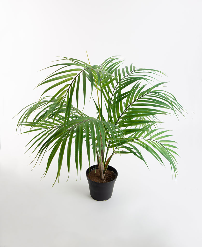 BERGSPALM artificial indoor plant