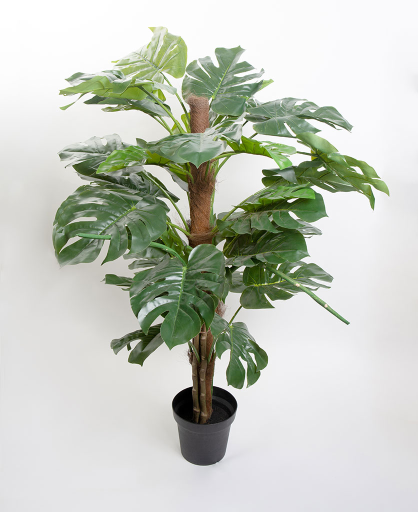 Artificial Monstera plant in pot with stake