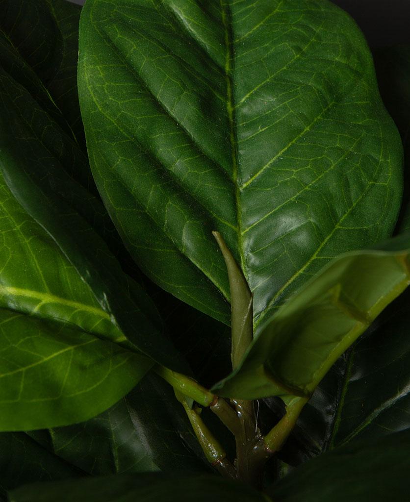Artificial fiddle leaf fig plant