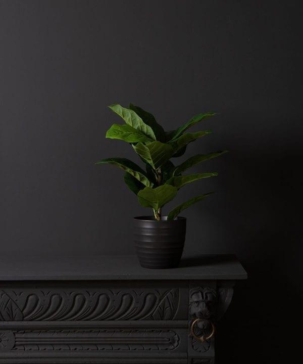 artificial fiddle leaf fig tree against black background