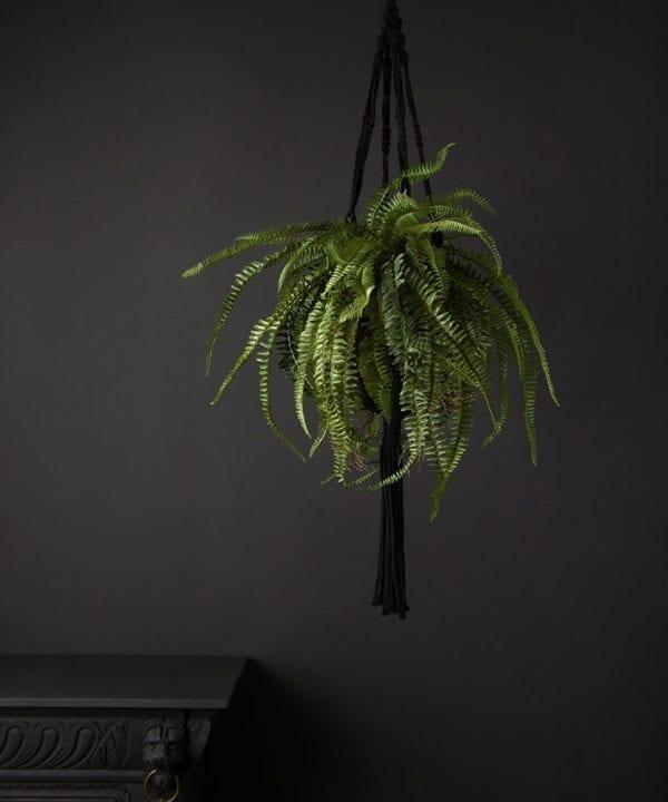 hanging artificial ferns in a black macrame hanger against a black background