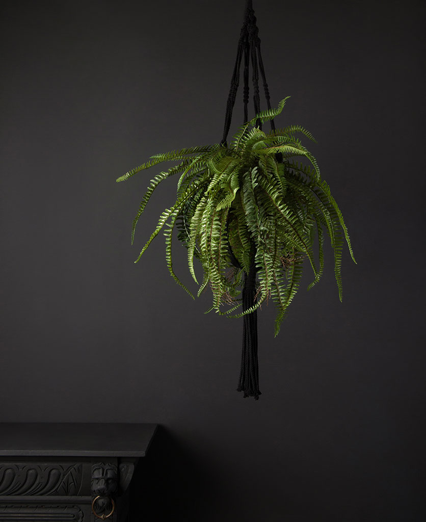 hanging artificial ferns in a black macrame hanger against a black background