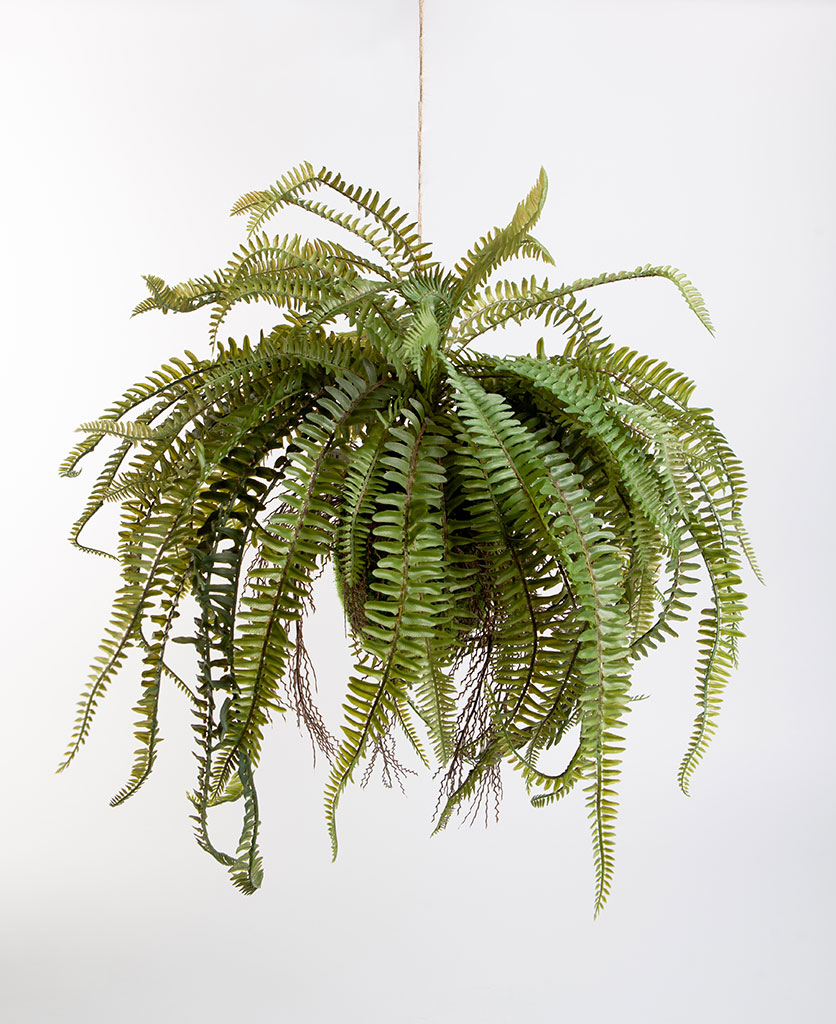 FERN artificial hanging plant against white background