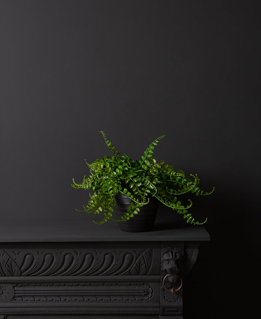 artificial fern plants for indoors in black pot against blackl background