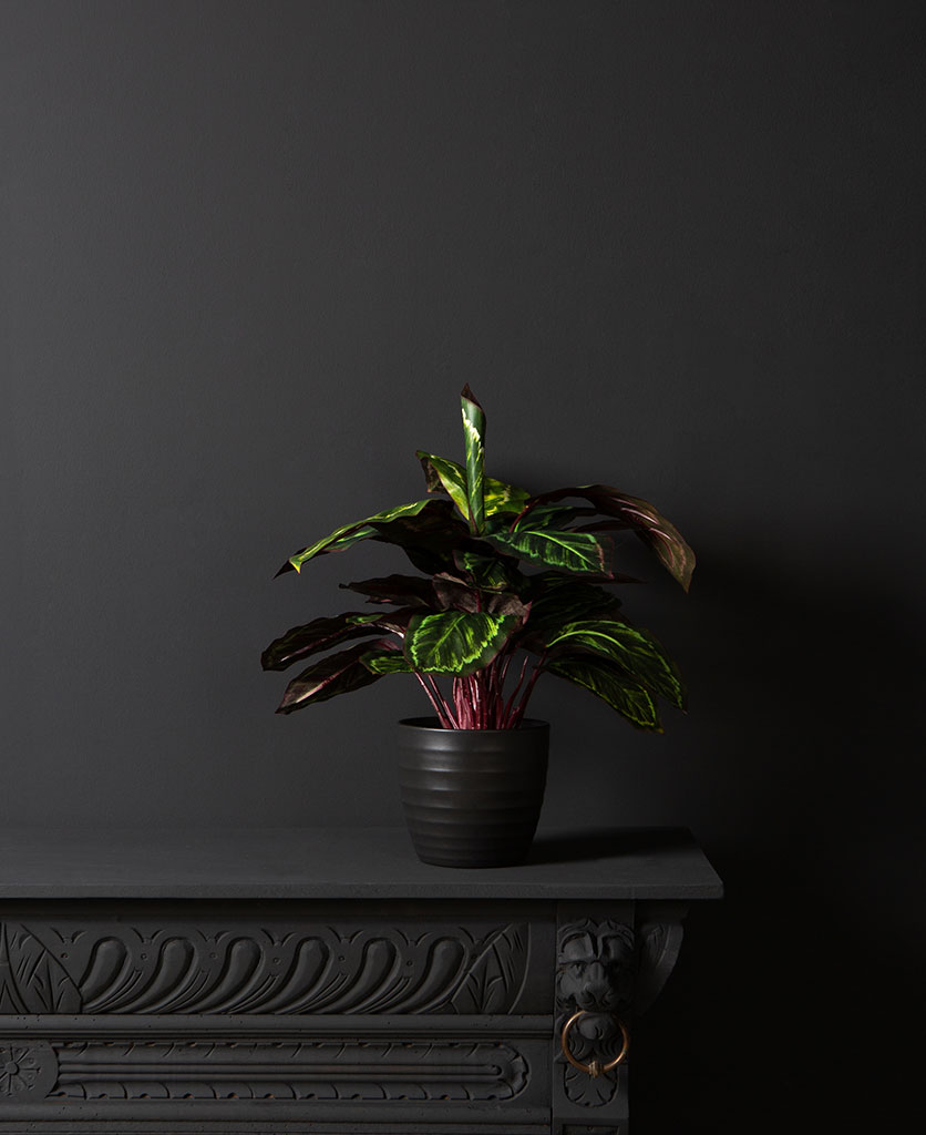 Artificial Prayer Plant
