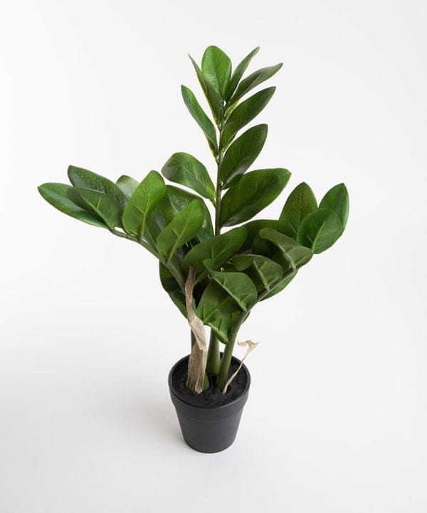 ZAMIFOLIA artificial plant