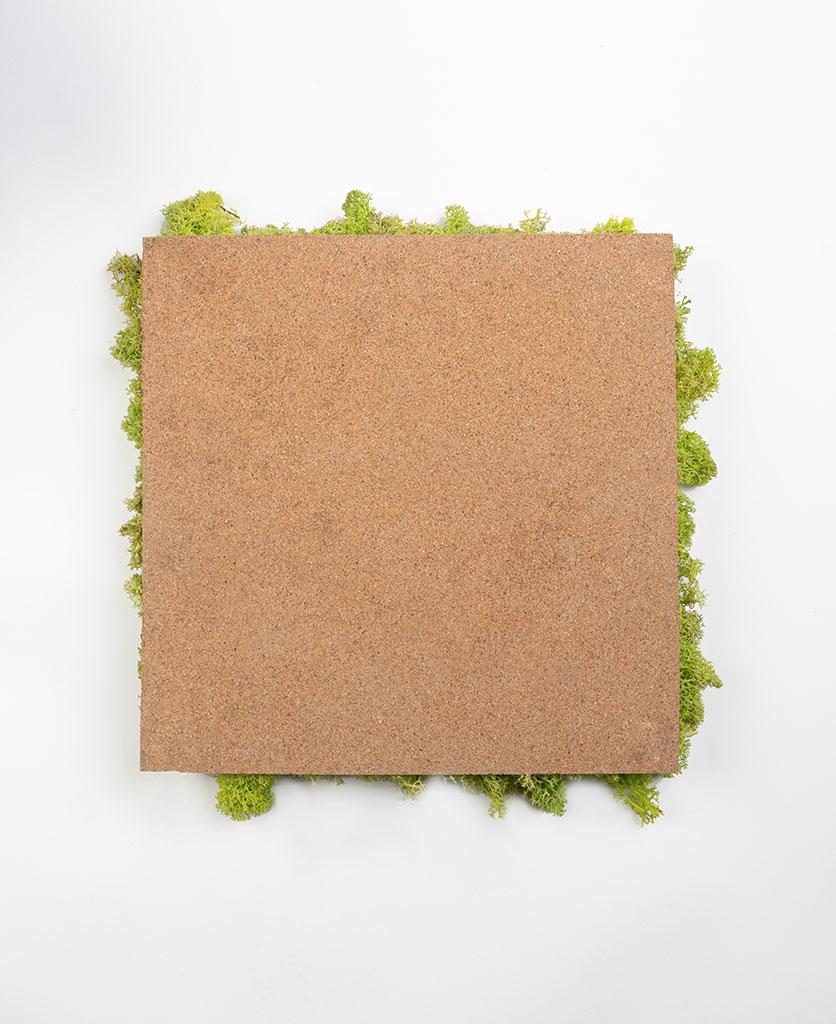 reverse of moss wall panel
