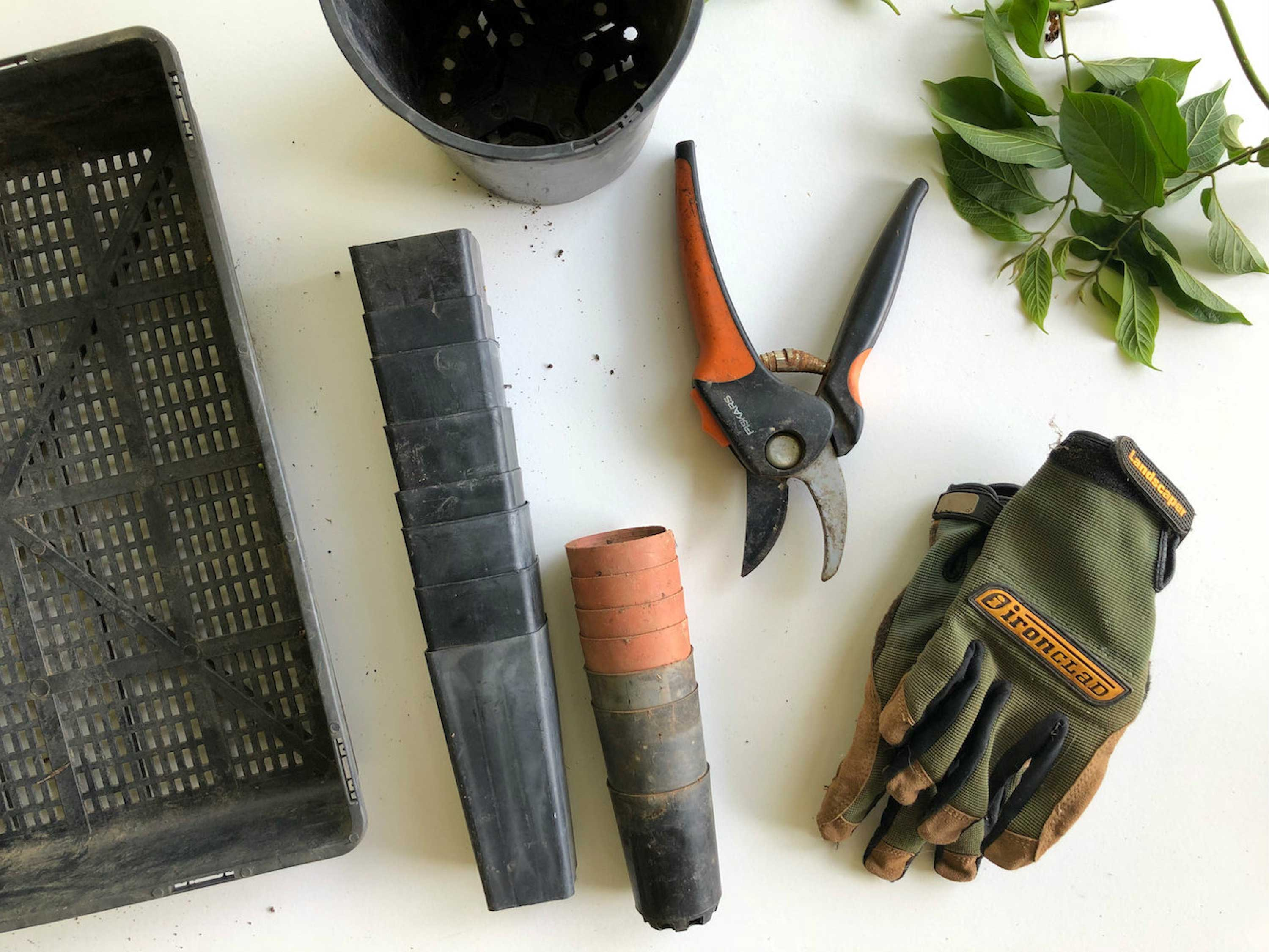 flat lay of gardening gloves, plant pots and garden scissors against white background